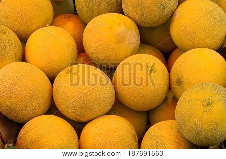 Cantaloupe melons on a market. Close-up. Top view