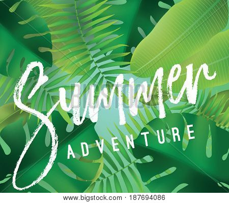 Summer adventure. Vector background with typography for posters and banners. Illustration with tropical leaves and sun.