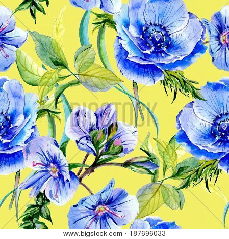 Wildflower anemone flower pattern in a watercolor style isolated. Full name of the plant: blue anemone. Aquarelle wild flower for background, texture, wrapper pattern, frame or border.
