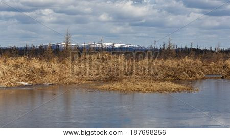 Landscape. Cool spring day in South Yakutia Russia