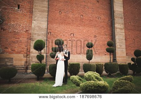 Happy wedding couple hugging and smiling in park with decorative bushes .