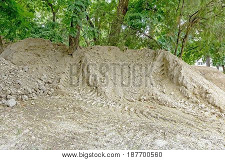 Piled ground around the trees with tire tracks of a building vehicle