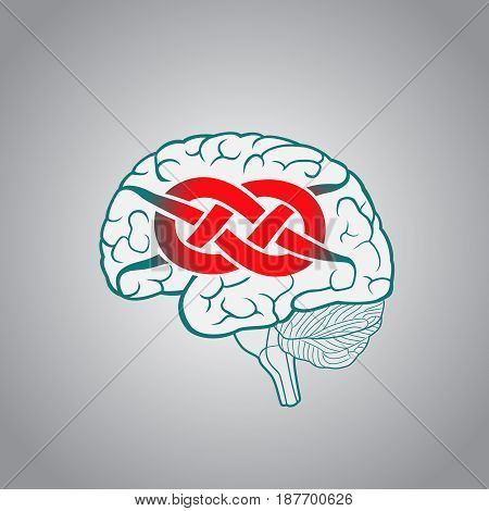 Brain with convolutions associated to the knot