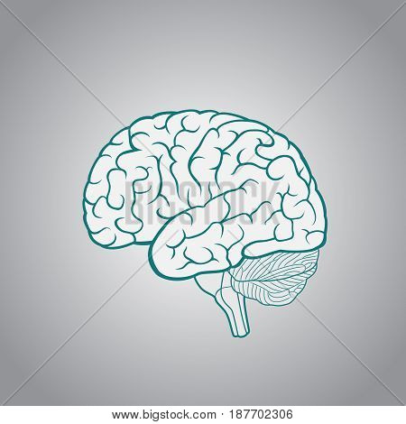 Schematic illustration of human brain on a dark blue background