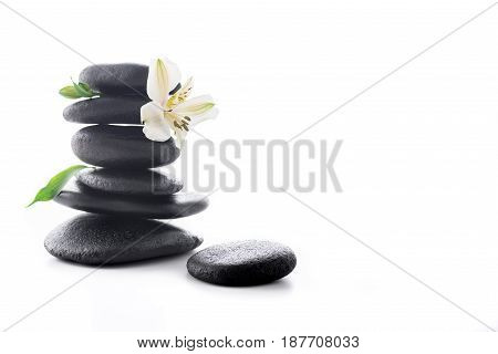 Zen Stones With Flower Isolated On White, Spa Treatment Concept