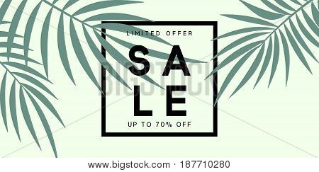 Summer sale banner. Poster tropical leaves vector design.