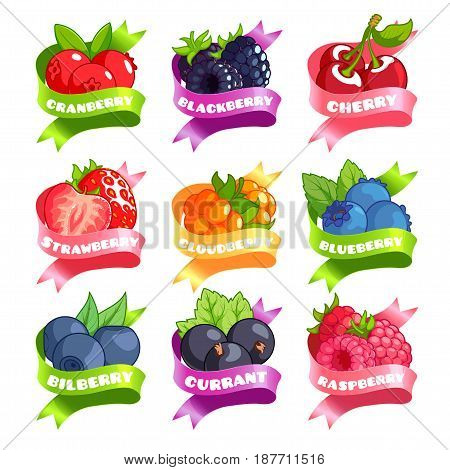 Nine stickers with ribbon and different berries. Cranberry blackberry cherry strawberry cloudberry blueberry bilberry currant and raspberry. Vector illustration isolated on a white background.