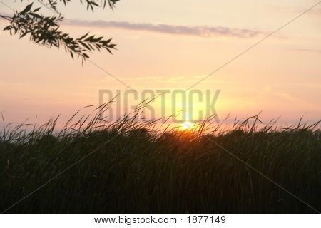 Sunset Over Tall Grass