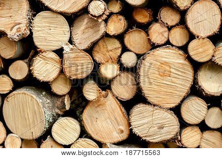 many wooden logs cuts can be used as background
