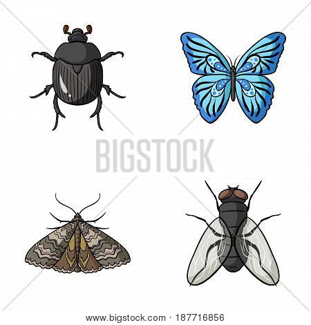 Wrecker, parasite, nature, butterfly .Insects set collection icons in cartoon style vector symbol stock illustration .