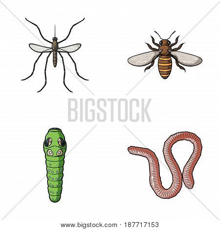 Worm, centipede, wasp, bee, hornet .Insects set collection icons in cartoon style vector symbol stock illustration .