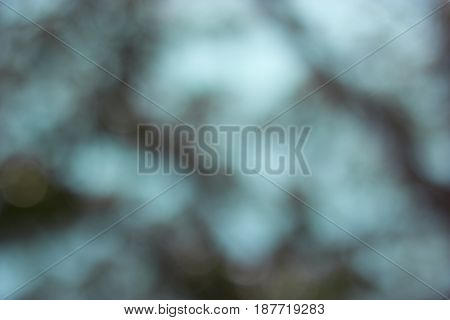 Abstract bokeh of green lights on background