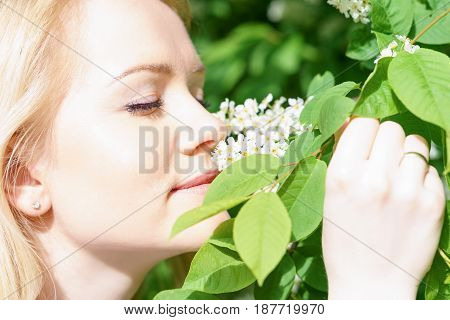 young attractive caucasian woman in green forest with smile is sniffing blossom of bird-cherry, holding it by hands at sunny spring day