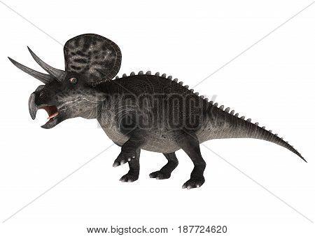 3D Rendering Dinosaur Zuniceratops On White