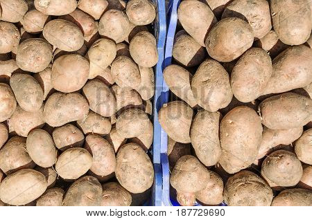 Fresh Organic Potato. Ready For Cooking Vegetables.  Healthy Food With Vitamins.