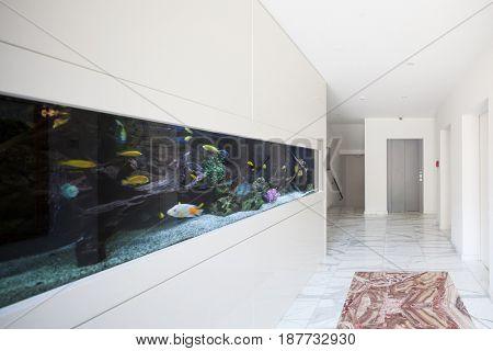 Modern building, entrance with aquarium