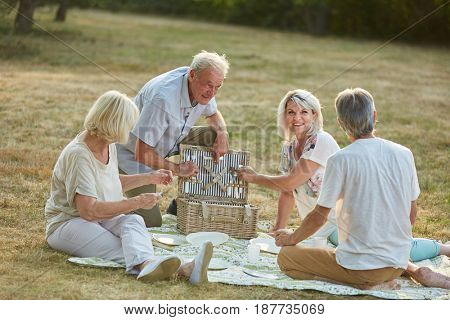 Friends having a picnic together in the park in summer in the nature