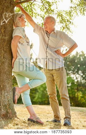 Senior couple in love flirting under a tree in the park in summer