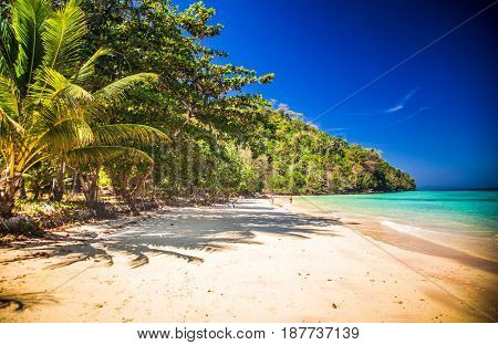 idillyic tropical hidden beach with white sand and palm trees on Bamboo island, Ko Phi Phi archipelago Thailand
