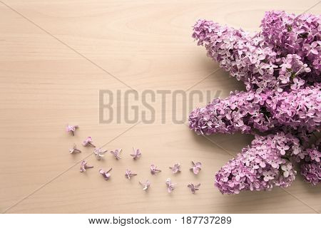 Beautiful branches of lilac flowers on wooden background