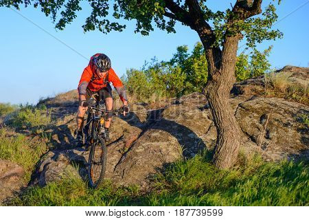 Cyclist in Red Jacket and Helmet Riding the Mountain Bike Down Rocky Hill near Beautiful Green Tree. Adventure and Extreme Sport Concept.