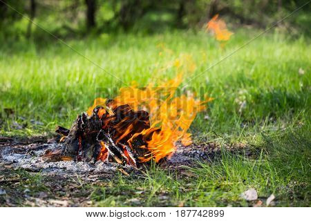 firepalce with flame amonf green grass on meadow