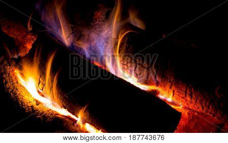flames on wood in hot campfire