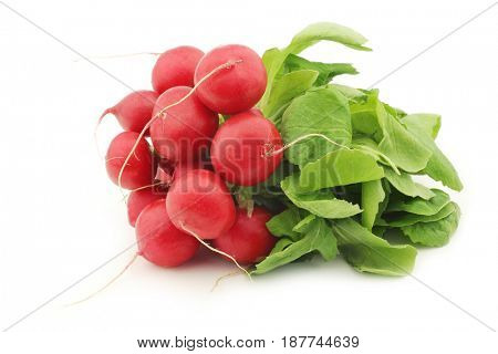 red radish on a white background
