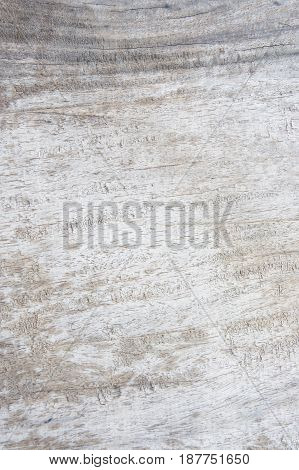texture dirty wood background , old wooden
