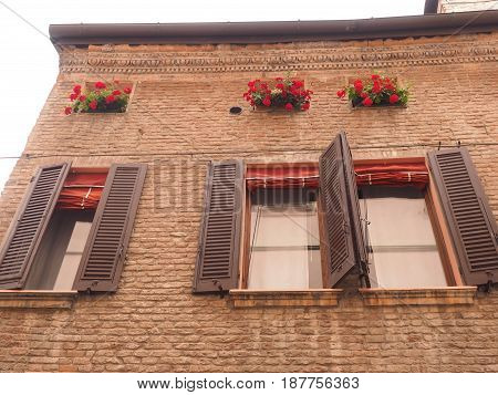 Medieval façade, three windows and three flower pots.