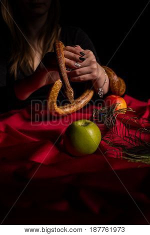 A Girl Dressed In Black Is Holding A Snake Above A Table With Apples