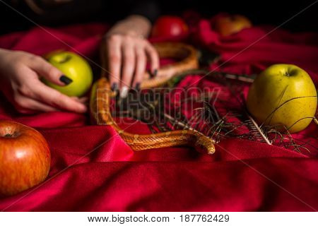The Snake Crawls Around With Apples