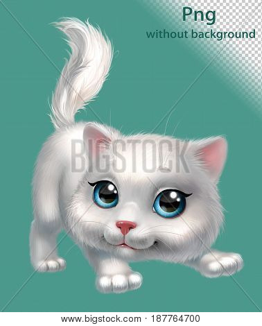 White fluffy kitten playing, png without background