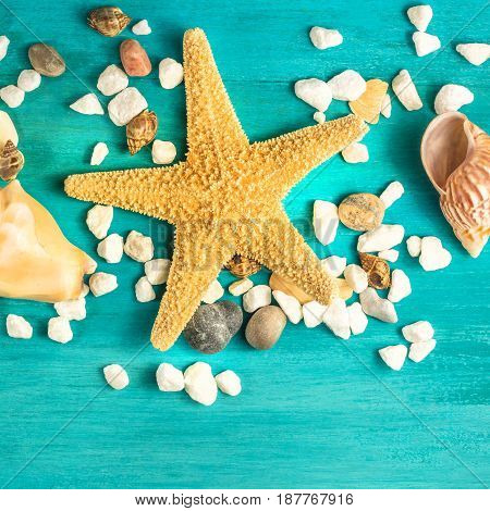 A square overhead photo of a sea star, sea shells, and pebbles on a vibrant turquoise background, a design template for a summer vacation banner