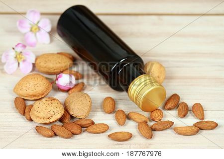 Organic almond oil in a bottle almond kernels and nuts around decorated with pink petals.
