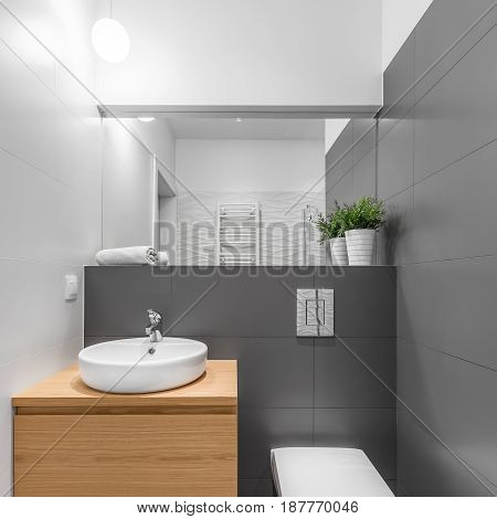 Small Grey And White Bathroom