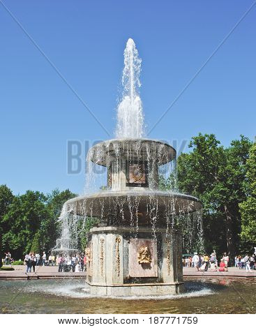 PETERHOF RUSSIA - 21 May 2017 Fountain of Peterhof Palace in gardens. The Bowl Fountain of Lower Park.