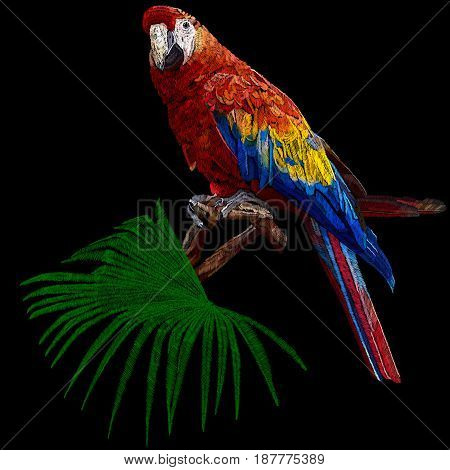 Embroidery parrot, embroidery parrot bird, drawn parrot bird, embroidery colorful parrot bird, decoration embroidery bird parrot, embroidery parrot, embroidery parrot bird. Vector.