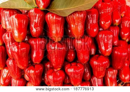 Delicious Rose Apple Fruit From Thailand and Indonesia