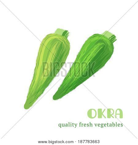 Fresh okra isolated on white background. Healthy food for the design of menu. Hand-drawn color vegetable design. Vector illustration.