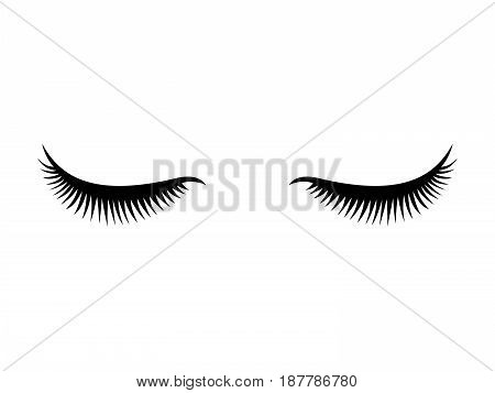 Eye lashes vector icon. Lashes flat vector
