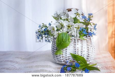 White wicker small basket of flowers forget-me-nots and Apple on a light background on a Sunny day.