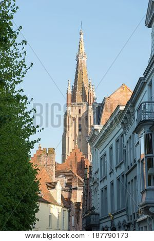 Sint-Salvator Cathedral at sunny day in Bruges Belgium. poster
