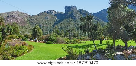 KIRSTENBOSCH BOTANICAL GARDEN, CAPE TOWN SOUTH AFRICA 24lnki