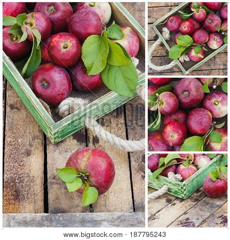 Full Tray Of Red Ripe Apples On The Wooden Background
