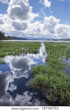 The clouds are reflected in the calm marsh water by Hauser Lake in Idaho.