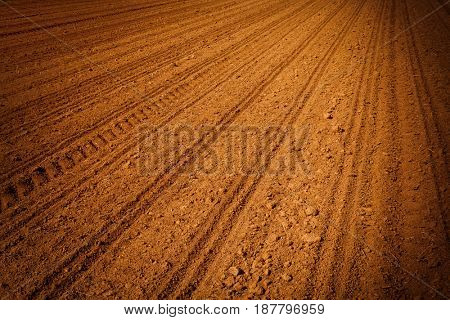 plowed agricultural field in which the crop is grown, the furrows close-up