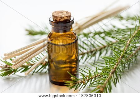 cosmetic spruce oil in bottles with fur branches for aromatherapy on white table background