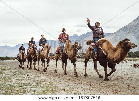 Hundar village in Leh district Jammu and Kashmir India - August 21 2016: Tourists ride the unique camels of the highest mountain desert. Very popular attraction in Nubra Valley on AUGUST 21 2016