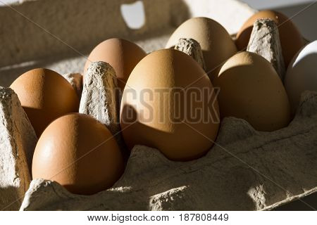 Rustic eggs in the package by the rays morning sun. Ready to cooking Breakfast